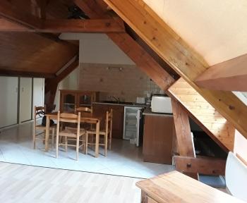 Location Appartement 1 pièce Vineuil (41350) - VINEUIL