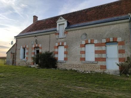 Location Maison de village 3 pièces Couddes (41700) - CALME